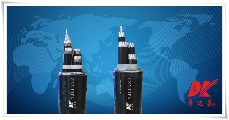 额定电压0.6/1kV铝合金芯联锁铠装电力电缆